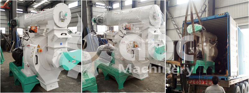 buy from best acacia sawdust pellet mill manufacturer