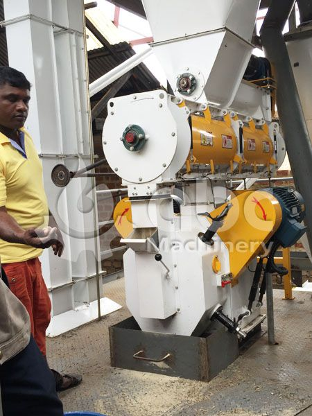 animal feed machinery for extruding high quality fodder pellets