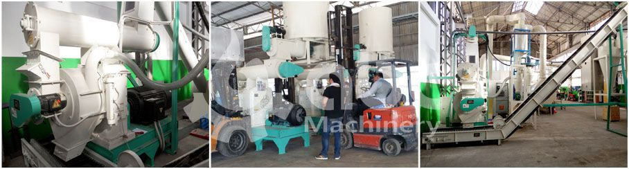 biomass pelletizing system of complete wood pellet mill plant