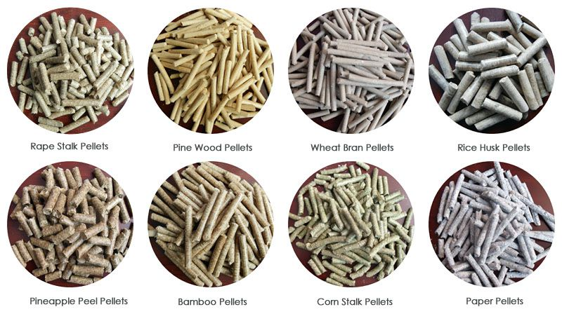 different biomass pellets display