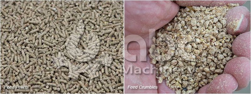 make feed pellets and feed crumbles