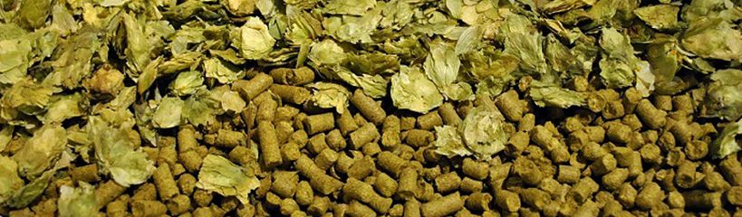 hops pellets to make beer