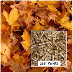 Making Fuel Pellets from Leaves