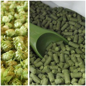 make hops into pellets