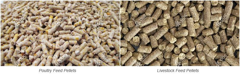 solutions for making poultry and livestock feed pellets