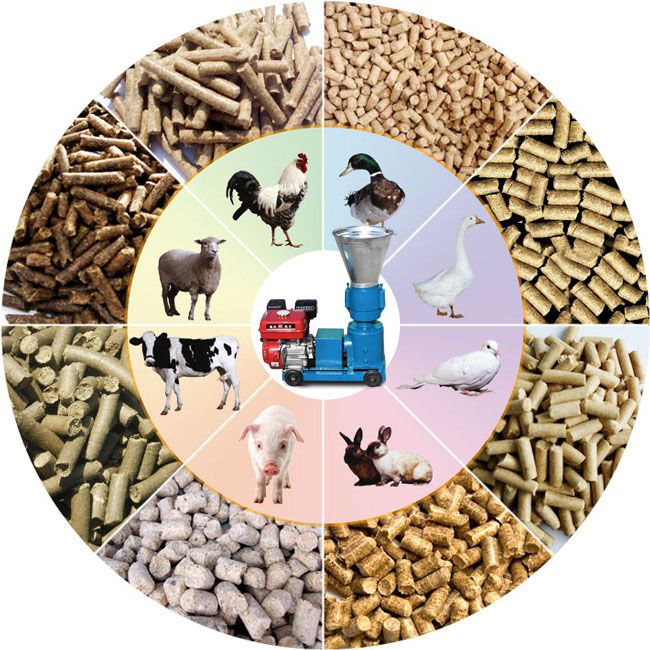 making small scale animal poultry  feed pellets on farm or at home