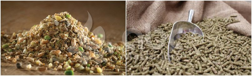making livestock poultry feed pellets in industrial scale