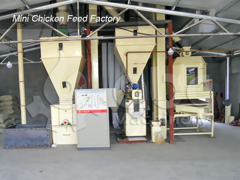 low cost mini chicken feed line