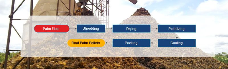 palm fiber pellet plant process for small to medium production line