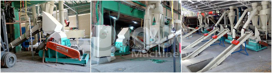 biomass pelletizing plant crushing system for industrial scale business plan