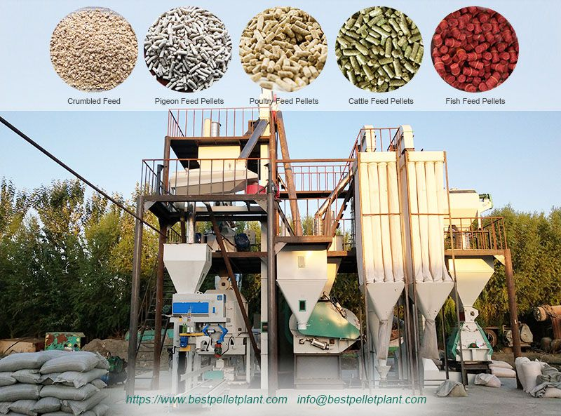poultry, cattle feed plant supplier in Uzbekistan
