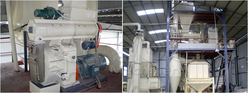 poultry feed pelletizing system for manufacturing large scale fodder pellets