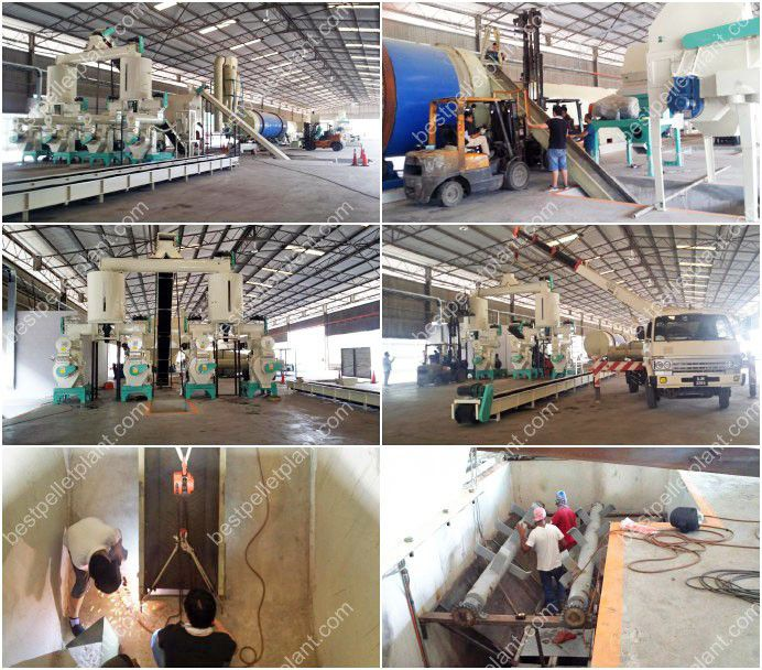 Biomass Pellet Production ~ Complete production line of biomass palm pellet