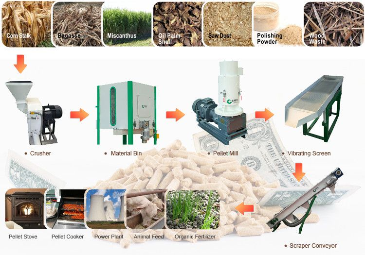 small biomass pellet mill plant for making mini and small scale fuel pellets
