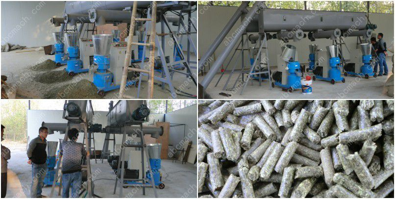 small wood pelleting plant