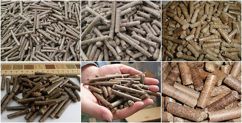 produce small scale production of wood and biomass pellets