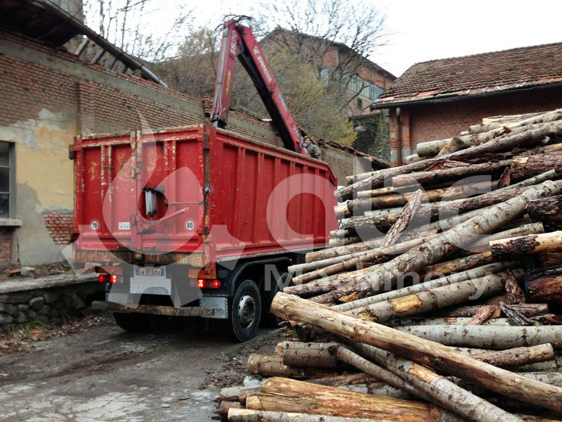 wood log for wood pellets manufacturing production