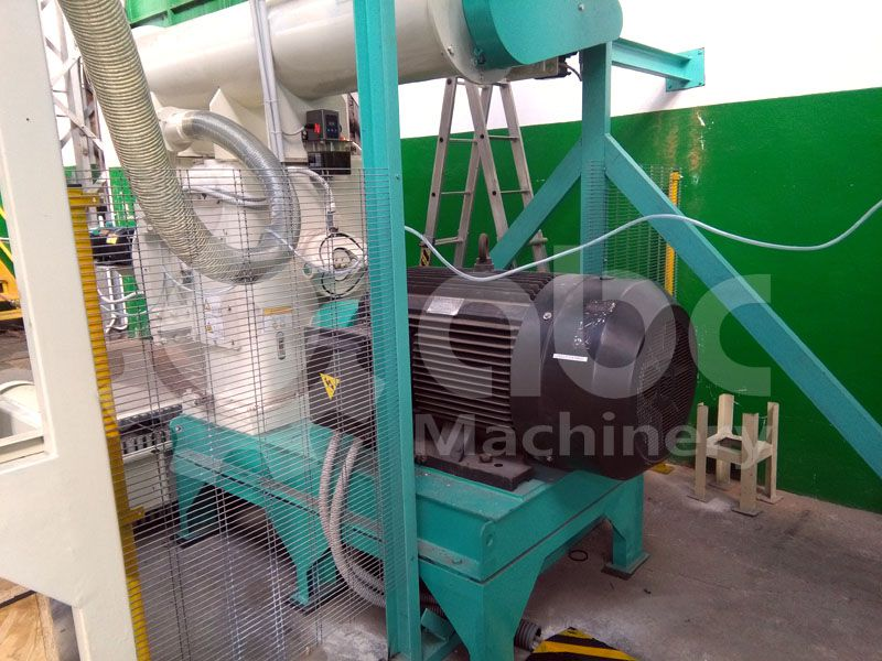 wood pellet manufacturing machine - ring die type pellet mill