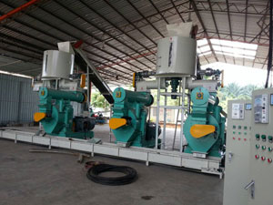 4-5 Ton Per Hour EFB Pellet Plant in Malaysia