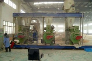 5-6T Automated Wood Pellets Plant